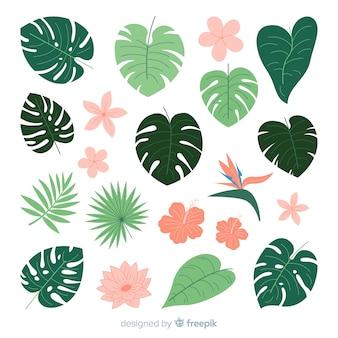 Płaskie tropikalne kwiaty i liście