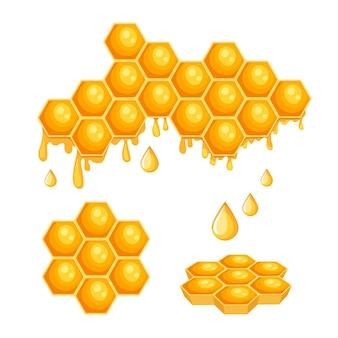 Plastry miodu z miodem pszczelim, komórki sześciokąta z kapiącą słodką cieczą na białym tle. zdrowe słodycze