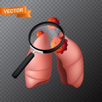 Płuca ludzkiego ciała pod lupą z komórkami wirusowymi. medyczna ilustracja znalezienia wirusa lub wyszukiwania w narządzie wewnętrznym za pomocą lupy na przezroczystym tle