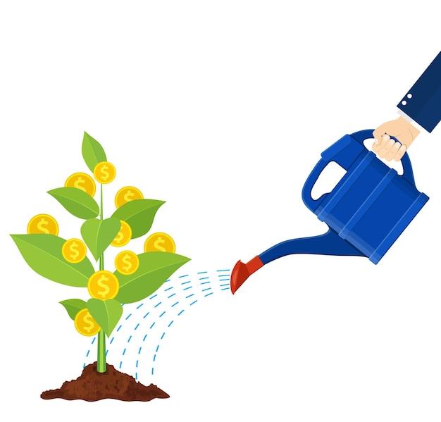 Podlewanie drzewa monety pieniądze z puszką. rosnące drzewo pieniędzy. inwestowanie, inwestowanie. złote monety na gałęziach