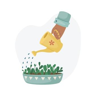 Podlewanie rośliny domowej w doniczce z konewki. sadzenie roślin. rośliny ozdobne we wnętrzu domu. płaski styl.