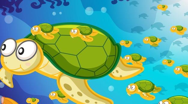 Podwodna scena z wieloma pływającymi żółwiami