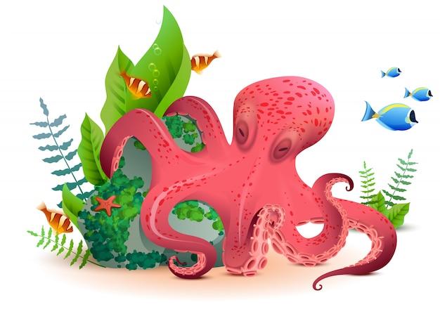 Podwodna światowa czerwona ośmiornica i kolorowe ryby