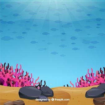 Podwodne tło ze zwierzętami morskimi