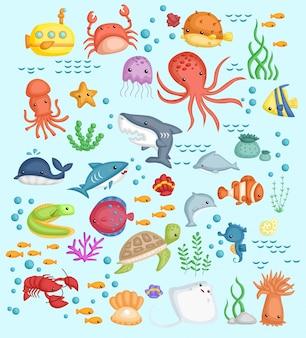 Podwodny zestaw zdjęć