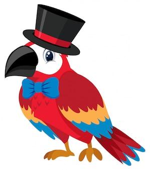 Pojedyncza postać papugi