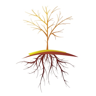 Pojedyncze małe drzewo łysy z korzeniami płaskie retro kreskówka na białym tle ilustracji wektorowych