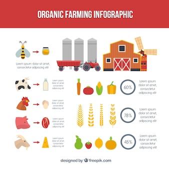 Pojedyncze produkty rolne dla infografia