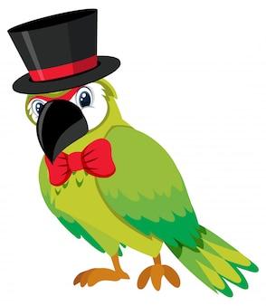 Pojedynczy znak zielona papuga na białym tle