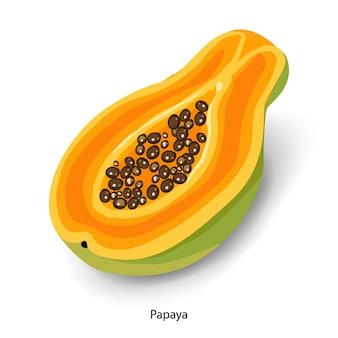 Pokrojona papaja ilustracja kreskówka wektor dojrzałe owoce tropikalne pół papai z izolowanymi nasionami