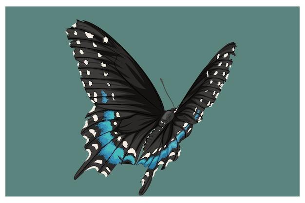 Połączone niebieskie i czarne motyle