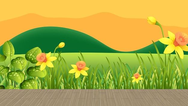 Pole kwiatów i zielona trawa z górskim tłem w czasie zachodu słońca