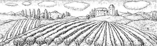 Pole winnic. wiejska scena z plantacją winnicy na wzgórzu i domu ranczo ręcznie rysowane grawerowanie szkicu. krajobraz rolniczy z polem uprawnym. ilustracja winnic i upraw winorośli