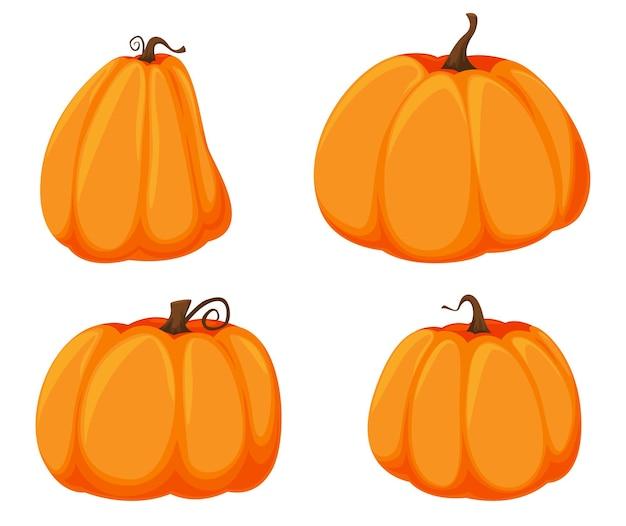 Pomarańczowe dynie o różnych rozmiarach i kształtach. ilustracja wektorowa