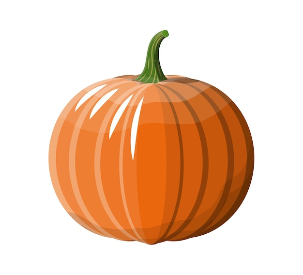 Pomarańczowe warzywo dynia. dynia halloween na białym tle.
