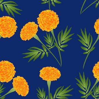 Pomarańczowy nagietek na indygowym błękitnym tle