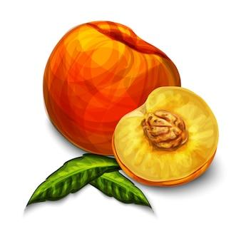 Pomarańczowy naturalny organiczny owoc brzoskwini