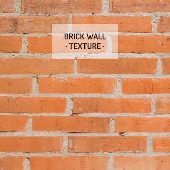 Pomarańczowy tekstury ścian cegła