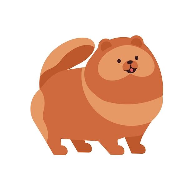 Pomorskie lub pom. urocza zabawna rasowa zabawka lub lap pies rasy szpic na białym tle. urocze urocze zwierzę domowe lub zwierzę domowe. ilustracja wektorowa kolorowe w stylu cartoon płaskie.