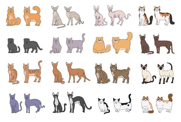 Popularne rasy kotów pysk i profil. wektor zestaw ilustracji kontur szkicu na białym tle.