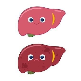 Porównanie zdrowej wątroby i tłuszczów na żywo