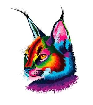 Portret głowy karakala z wielobarwnych farb splash realistycznego rysunku w kolorze akwareli