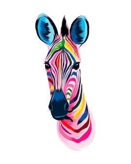 Portret głowy zebry z wielobarwnych farb splash realistycznego rysunku w kolorze akwareli