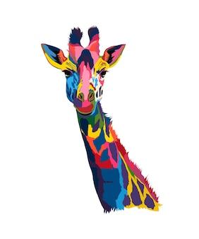 Portret głowy żyrafy z wielobarwnych farb splash realistycznego rysunku w kolorze akwareli