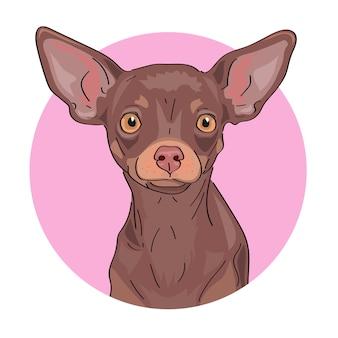 Portret małego uroczego psa, terier zabawka