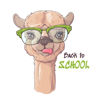 Portret ślicznej alpaki w okularach