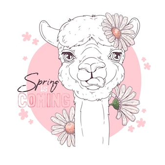 Portret ślicznej alpaki z kwiatami