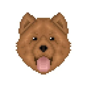 Portret sztuki pikselowej chowchow