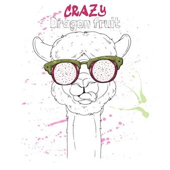 Portret uroczej alpaki w okularach z efektem pitaya