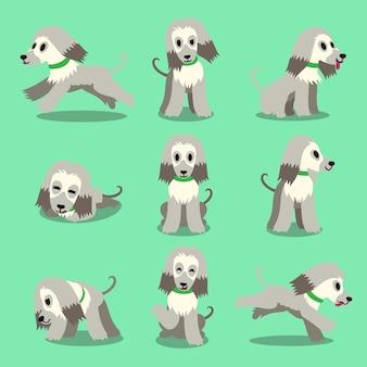 Postać z kreskówki afgańskiego psa psa stanowi zestaw