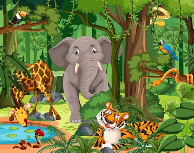 Postać z kreskówki dzikich zwierząt na scenie leśnej