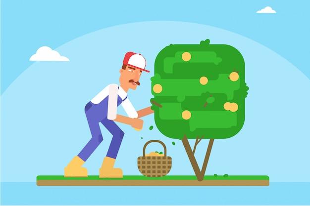 Postać z kreskówki żniwa ogrodnik, człowiek zbiera jabłka