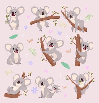 Postacie koala. dziki niedźwiedź australia kreskówka zwierzęta futrzane ilustracje