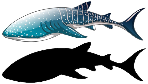 Postacie rekina wielorybiego i jego sylwetka na białym tle