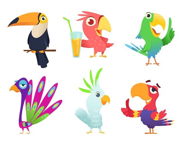 Postacie tropikalnych papug. ptasie pióra egzotycznych ptaków ara zwierzęta kolorowe skrzydła śmieszne egzotyczne latające arara akcja pozuje do zdjęć