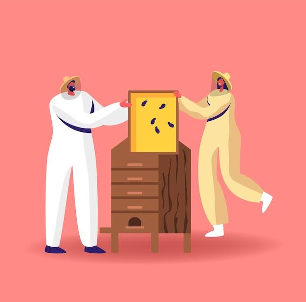 Postacie wydobywające miód ilustracja. pszczelarze w stroju ochronnym w pasiece zabierają ramkę o strukturze plastra miodu z drewnianego ula