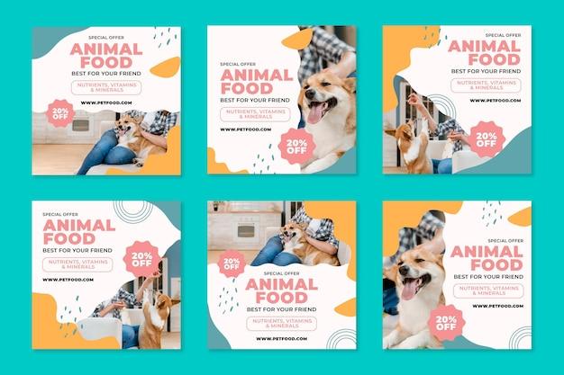 Posty na instagramie z karmą dla zwierząt