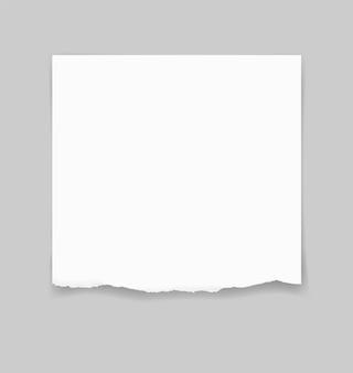 Poszarpane papierowe krawędzie dla tła. rozdzierający papierowy tekstury tło.