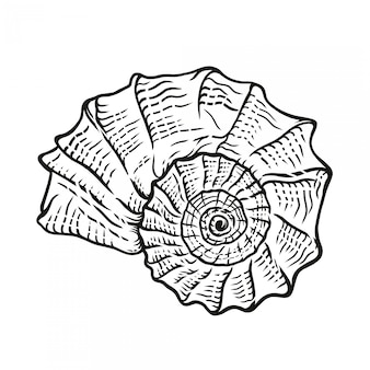 Powłoki rocznika handdrawn ilustracja