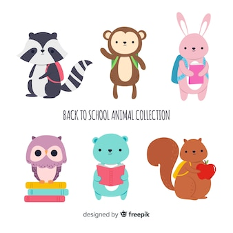 Powrót do szkolnej kolekcji zwierząt