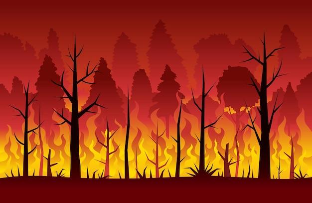 Pożar, pożar lasu, tło