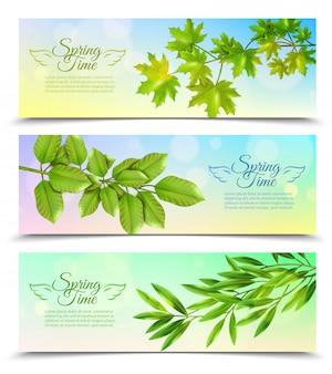 Poziome bannery zestaw z zielonymi gałęziami