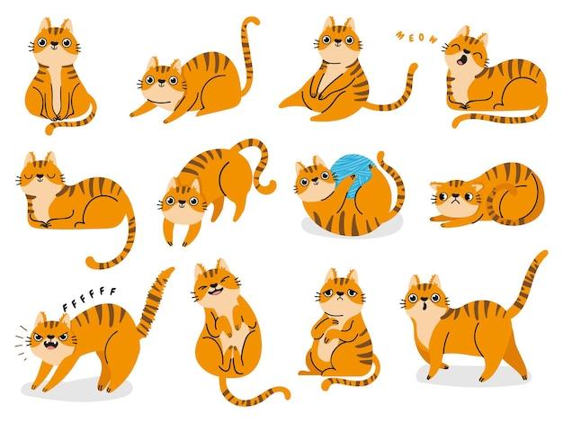 Pozy kota. kreskówka czerwone grube paski koty emocje i zachowanie. zwierzę domowe kociak zabawny, śpiący i przestraszony. wektor zestaw języka ciała kota. ilustracja kota domowego, słodkie paski zwierzęcy kociak
