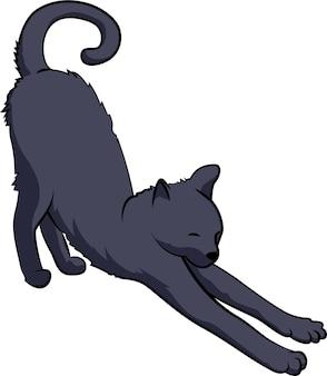 Pozycja jogi rozciągająca mięśnie kota