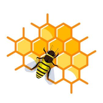 Pracująca pszczoła na plastrze miodu wypełniona miodem. pszczoła robi miód i propolis.