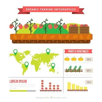 Produkty ekologiczne infografia
